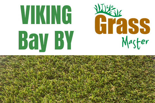 Viking Bay Artificial Grass by The Grass Master